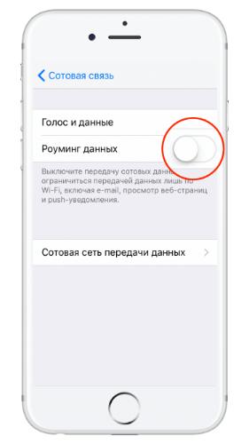 как отключить интернет в роуминге на iphone